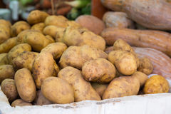 Pommes de terre pour se vendre sur un marché libre Photos libres de droits