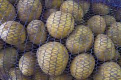 Pommes de terre préemballées Photo stock