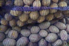 Pommes de terre préemballées de deux variétés Image stock