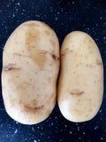 Pommes de terre ressemblant aux visages humains Photo libre de droits