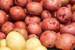 Pommes de terre rouges et blanches prêtes pour le dîner photos stock