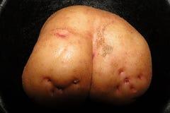 Pommes de terre sur une poêle noire Image stock