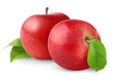 pommes deux Photos libres de droits