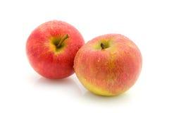 pommes deux juteux image stock