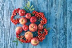 Pommes et baie de sorbe D'automne toujours durée photo stock