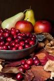 Pommes et canneberges Photos stock