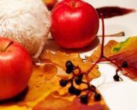 Pommes et châtaignes Photos libres de droits