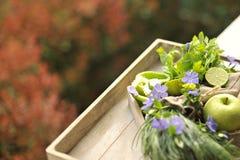 Pommes et chaux vertes, oignons verts Autumn Bouquet des fruits et des fleurs photos libres de droits
