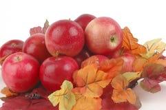 Pommes et feuillage d'automne Photo libre de droits