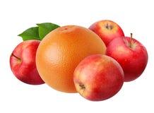 Pommes et pamplemousse d'isolement sur le fond blanc Image libre de droits