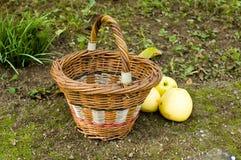 Pommes et panier en osier Photographie stock