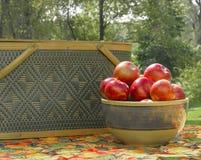 Pommes et pique-niques Photo libre de droits