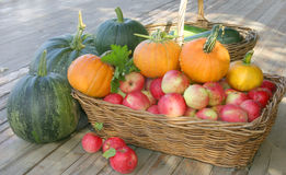 Pommes et potirons Image stock