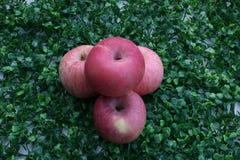 pommes fermé aux pommes sur le fond vert Photo stock