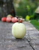 Pommes fraîches Photographie stock