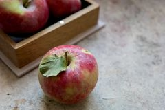 Pommes fraîches avec le pollen, une partie de pommes dans la boîte Photo stock
