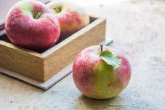 Pommes fraîches en automne Pommes avec le pollen sur la peau Photos libres de droits