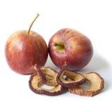 Pommes fraîches et fruits secs Photographie stock libre de droits