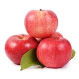 Pommes fraîches rouges d'isolement sur le fond blanc Photographie stock