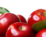 Pommes fraîches sur un fond blanc Image libre de droits