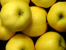 Pommes golden delicious Images libres de droits