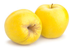 Pommes golden delicious Photographie stock