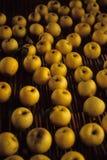 Pommes jaunes Photos libres de droits