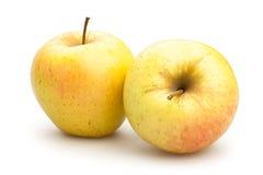 Pommes jaunes Photographie stock libre de droits
