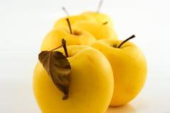 Pommes jaunes Photo libre de droits