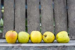 Pommes jaunes avec le fond en bois Photographie stock libre de droits