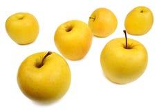 Pommes jaunes, d'isolement Photos libres de droits
