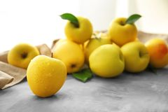 Pommes jaunes mûres Photos stock