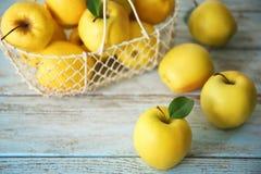Pommes jaunes mûres Image libre de droits