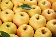 Pommes jaunes mûres savoureuses Photo libre de droits