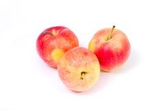 Pommes jaunes rouges sur un fond blanc Photographie stock libre de droits