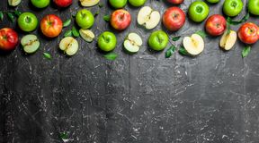 Pommes juteuses vertes et rouges avec le feuillage et les tranches d'Apple image libre de droits