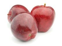 Pommes mûres Images libres de droits
