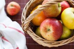 Pommes mûres Photos libres de droits