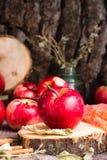 Pommes mûres sur une coupe d'arbre Photo libre de droits