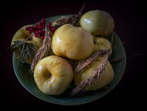 Pommes marinées Image stock