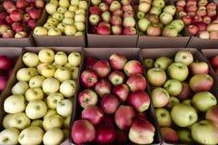 Pommes organiques dans la caisse Photos stock