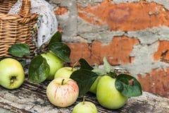 Pommes organiques dans la caisse Frais en nature Photos stock