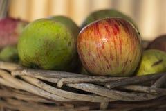 Pommes organiques dans le panier dans l'herbe d'été Images stock