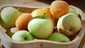 Pommes organiques dans le panier dans l'herbe d'été Pommes fraîches en nature 002 Images stock
