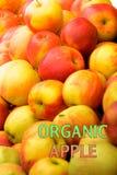 Pommes organiques de jardin avec la pomme organique de jardin de label images stock