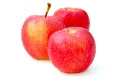 Pommes rouges Photos libres de droits