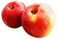 Pommes rouges. Image libre de droits
