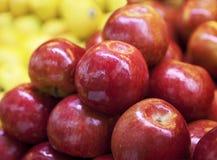 Pommes rouges Image libre de droits