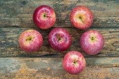 Pommes rouges Photographie stock libre de droits