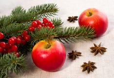 Pommes rouges, anis d'étoile et branches impeccables photographie stock libre de droits